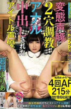 YAN-043 – YAN-043 Idle Voice Has Been Issued Two-hole Torture In Anal Transformation Voice Pig Maria Wakatsuki
